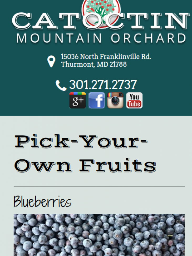 Pick-Your-Own Fruits
