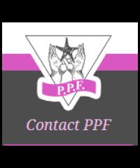 Patty Pollatos Fund