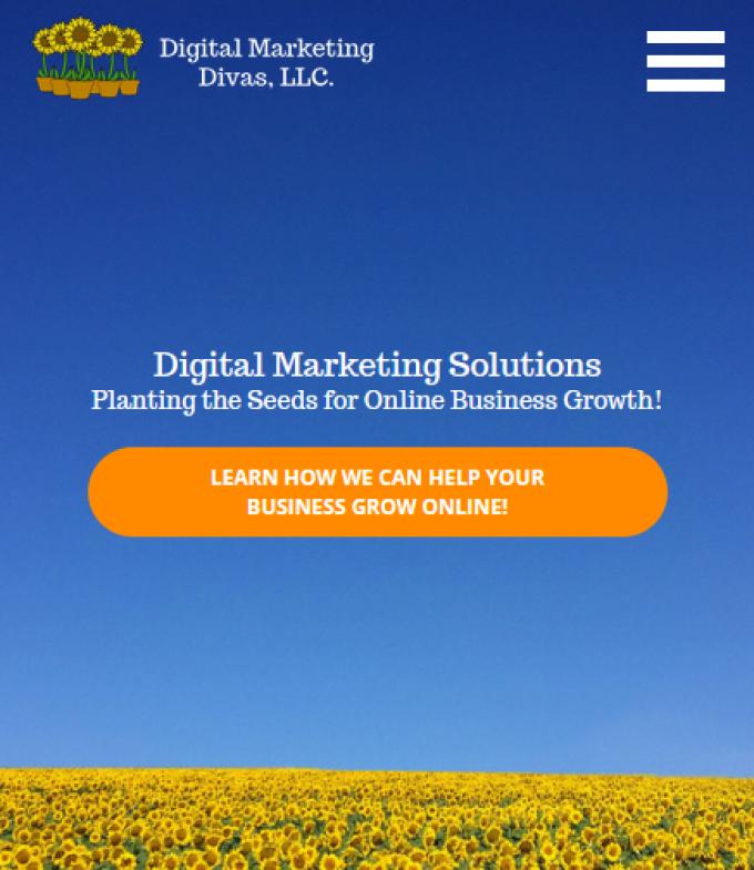 Digital Marketing Divas
