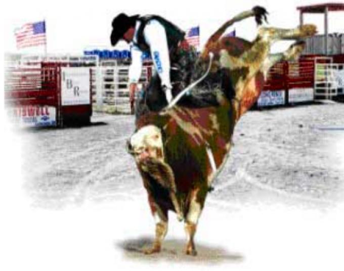 J Bar W Ranch